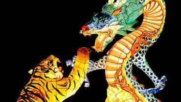 Befriending the Tiger…